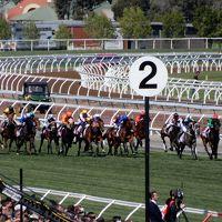 2017年 オーストラリア・メルボルンで競馬漬けの旅� フレミントン競馬場 ヴィクトリアダービー 前篇