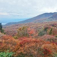 1泊2日 栃木県 那須高原 紅葉狩りとミニ苔盆栽作り (前編)