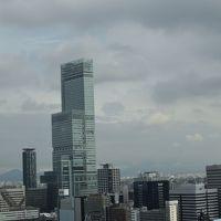 2017年 大阪方面への旅 2日目� あべのハルカス・新世界