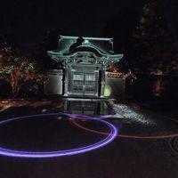 2017年11月24日 京都紅葉だより 東山から銀閣寺周辺の見所報告�夜の京都をうろうろ。