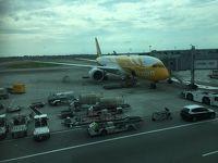 アジア2か国(台湾・シンガポール)周遊�〜シンガポール→札幌(気温差30度のフライト)〜