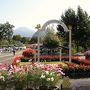 秀峰・大山を望む、日本最大級のフラワーパーク「とっとり花回廊」