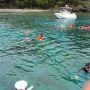 ※※ 8/1 ※※  この日は海で一日。 兄島でシュノーケル、南島上陸、その間にドルフィンスイムを楽しみつつ、クジラを探すという、かなり盛りだくさんのツアーに参加。  まず向かったのは「兄島海域公園」  流れのない穏やかなポイントにボートを係留してシュノーケル。 透明度は高いものの、やはり水温はかなり低く、水に入った瞬間ヒヤッとする。  ここでとても幻滅したのが、ツアーボート全てが餌づけをしていること。 かなり長い習慣らしく、ボートが停泊しただけで魚が集まってくる。 船長がゲストに餌(パンの切れ端のような)を渡して船上から盛大に撒餌・・・  これが世界遺産の海ですることだろうか? 自然のものを自然の姿のまま見るということでは満足できないのだろうか?  人間が撒いた餌に群がる魚には興味がなく、ほどほどにして切り上げた。