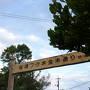 ボクの沖縄・・・自由気ままな一人旅(5/5) 備瀬フクギ並木集落にある古民家の宿・ちゃんや~で過ごした最高の時間!