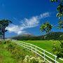 平日ならではの下道の渋滞を抜け高速でようやくスムーズに那須高原SAまで進み、まずは前回(2014年9月)訪れてとても広い牧場なのに牛を一緒に撮れなかった「那須町共同模範牧場」へ寄り道、どうぶつ王国のすぐ手前。 (写真は前回のもの)