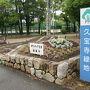 ●久宝寺緑地  今回の目的地は、ここです。 駅から10分?15分ほど歩きました。