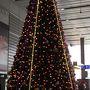 小倉駅には早、クリスマスツリーが飾られています。