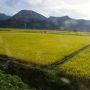 (【1】よりつづく) 七日町から会津鉄道で、南へ。のどかな風景が広がる。
