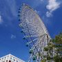 そうして、早々と大阪港に到着。 大阪・・・いい天気!