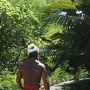 林道は良く整備・手入れされていて中々良かったんだけど、この日は台風一過で谷底にある林道は猛烈な湿気と暑さ。  歩き始めたらたった数分で全身汗ビッショリに。という訳で、シーズンオフの平日で人もほとんど居なかったので、シャツ等は全て脱いで。