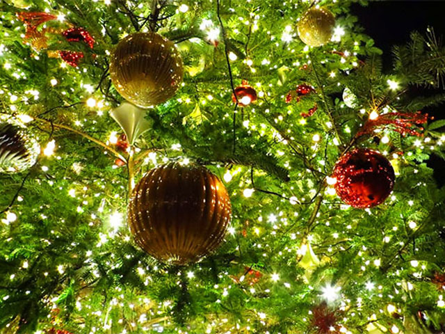 2012年 今年のクリスマスに行きたい! 輝くイルミネーションが美しい旅行記
