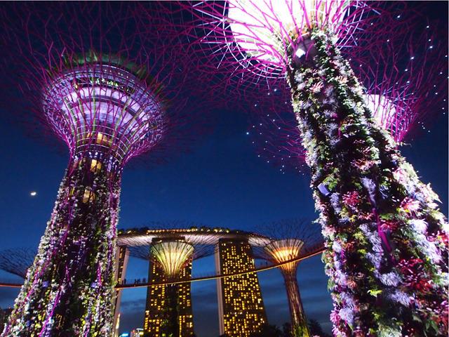 今年はスペシャル! シンガポールの魅力を満喫できるスポット9選