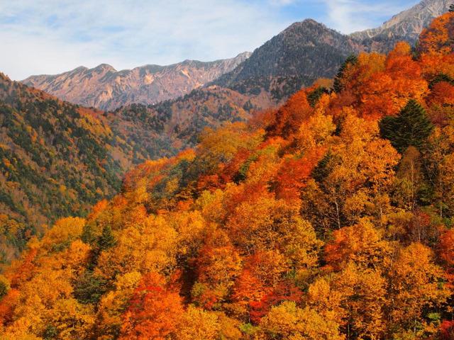 なんて艶やか! 国内の紅葉絶景スポット12選