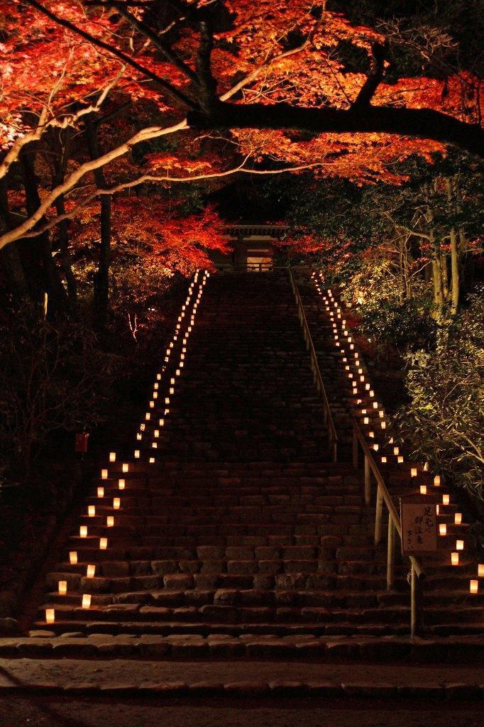 【奈良県】室生寺