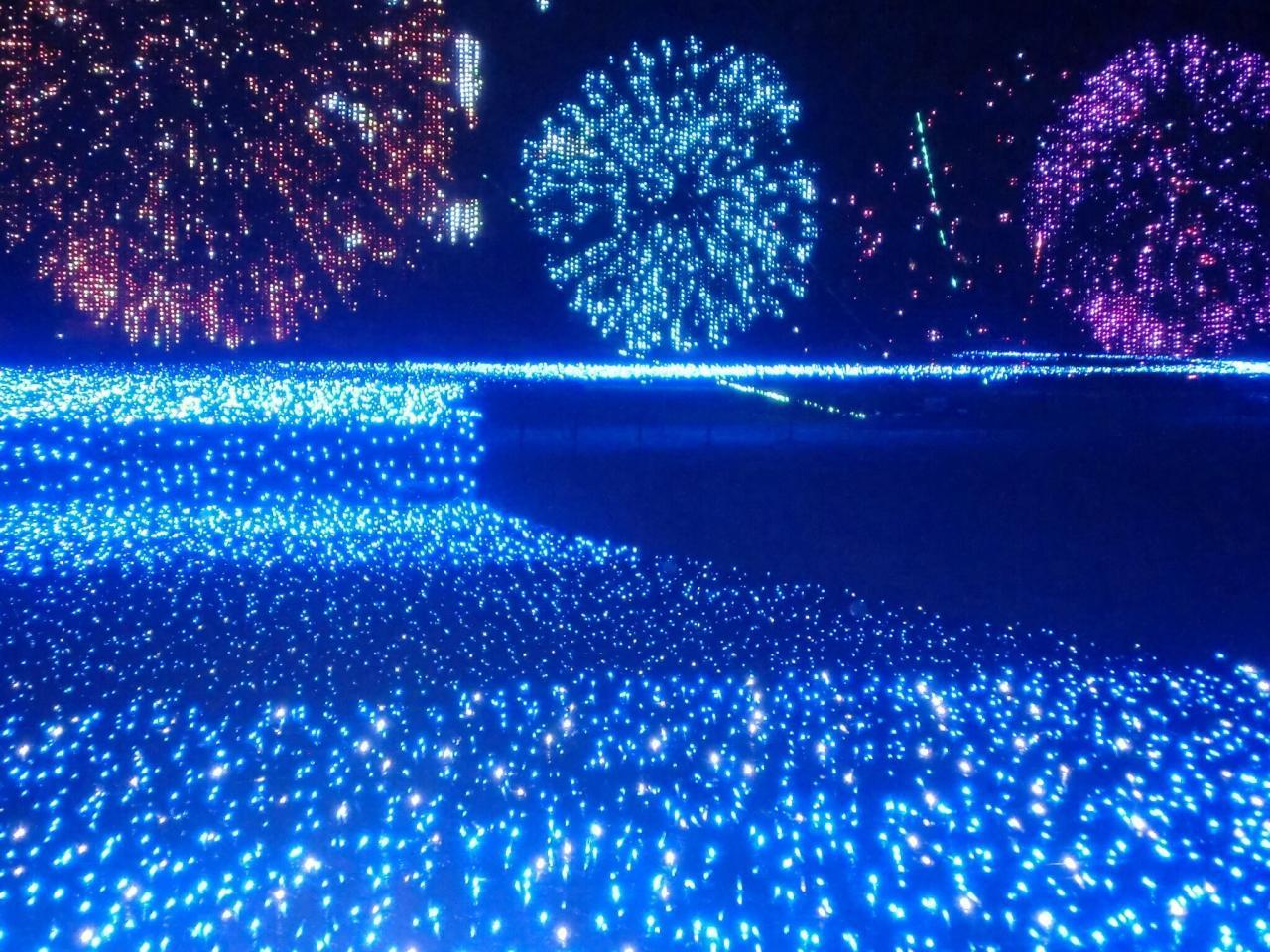 光のアートで都会に四季をかなでる 〜東京ミッドタウン〜